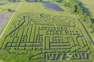 FREE Admission to Louisburg Ciderfest