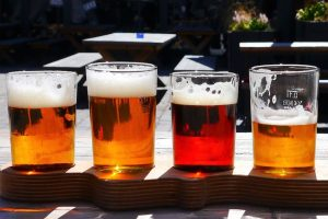 Discount on Advance Tickets to Westport Beer Festival