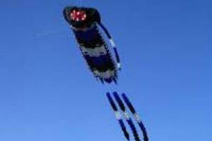 Free Kite Festival