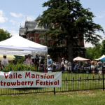 Free Admission to Vaile Strawberry Festival