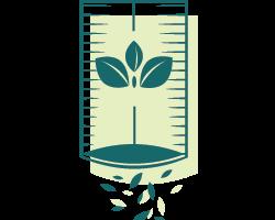 Borrow Seeds to Grow Your Garden