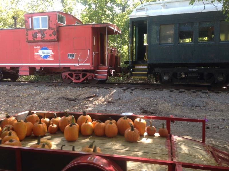 Belton Halloween Train - pumpkins sitting outside an old-fashioned caboose