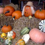 Deanna Rose Farmstead Hosts Pumpkin Hollow in October