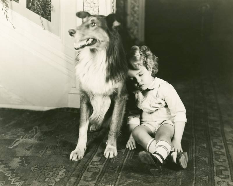 Black and white photo of dog guarding sleeping child