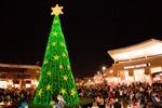 "Free Tree Lighting Ceremony and ""Legendary Light Show"""