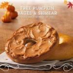 BOGO pumpkin bagels at Einstein Bros.